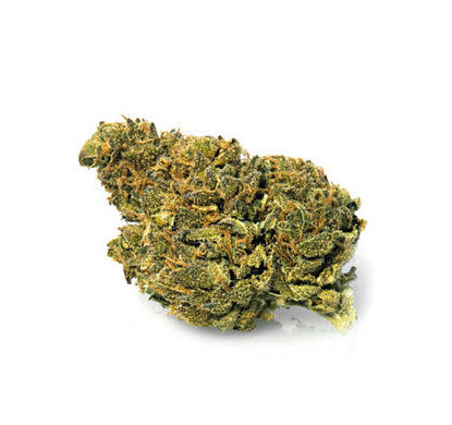 bubblegum-marijuana-legale-cannabis-light-italia
