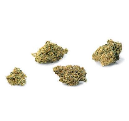bubblegum-weed-cannabis-legale-italia