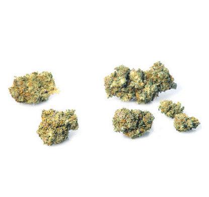 california-haze-erba-legale-marijuana-legale