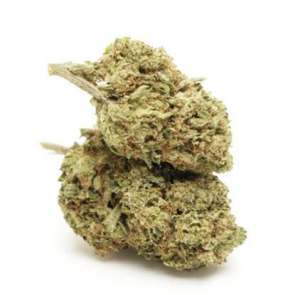 do-si-dos-cime-cbd-marijuana-cannabis-light-italia