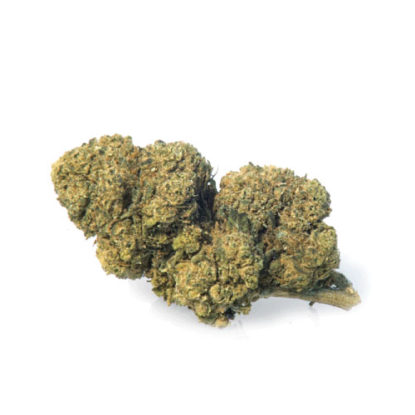 mango-haze-cannabis-light-marijuana-legale-cannabis-legale-italia