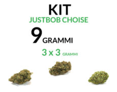 marijuana-kit-9-grammi