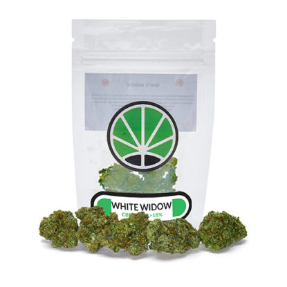 white-widow-marijuana-legale