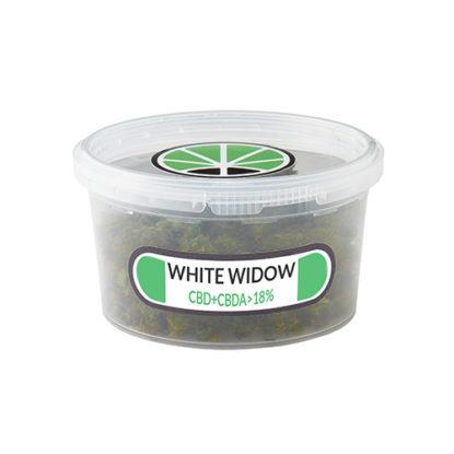 white-widow-weed-erba-legale-marijuana-legale-cannabis-italia