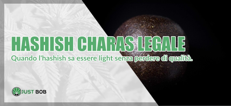 hashish Charas legale