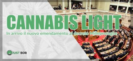 emendamento Cannabis Light Milleproroghe