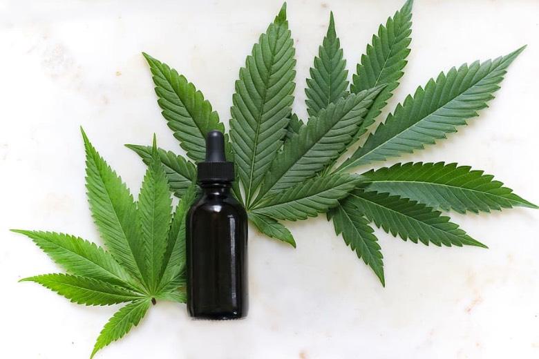 legalizzazione Italia 2020 Cannabis Light