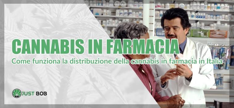 Cannabis farmacia cannabis legale