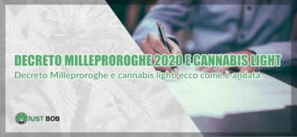 cannabis light e decreto Milleproroghe 2020