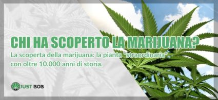 chi ha scoperto marijuana light