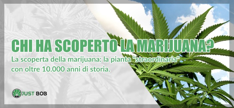 chi ha scoperto marijuana light