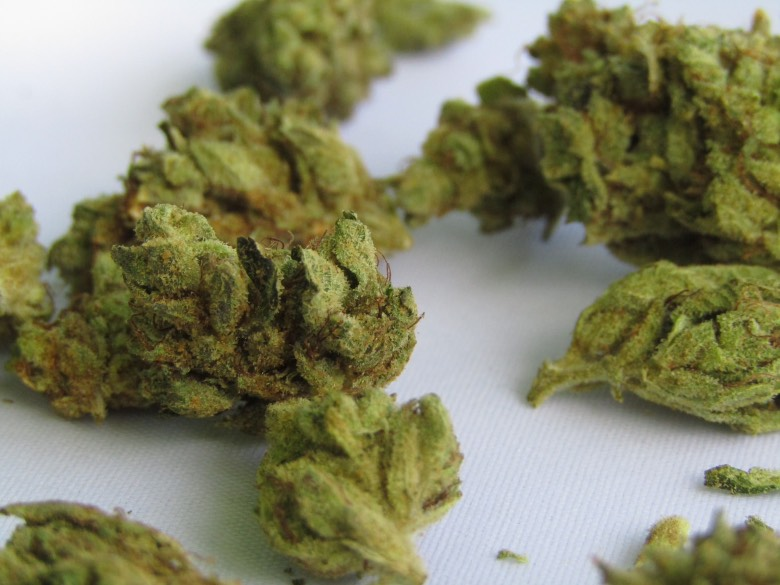 coltivare marijuana light in casa