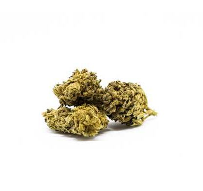 melon-kush-marijuana-legale-italia