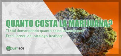 quanto costa la marijuana legale