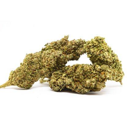 bubblegum cannabis legale Italia