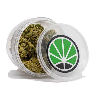 confezione cime di bubblegum cannabis cbd
