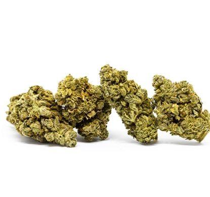 do si dos cannabis legale italia