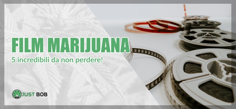 film marijuana light