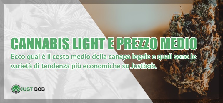cannabis light prezzo