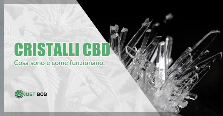 Cristalli CBD e olio CBD