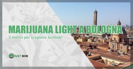 Marijuana light Bologna