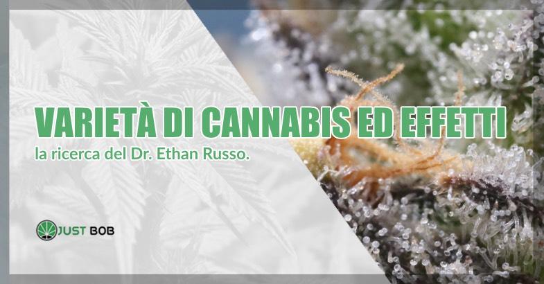 Varietà di cannabis ed effetti dottor Ethan russo