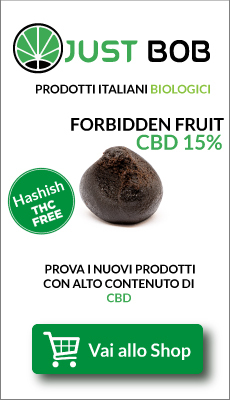Banner Justbob shop Hashish legale sfera Forbidden Fruit