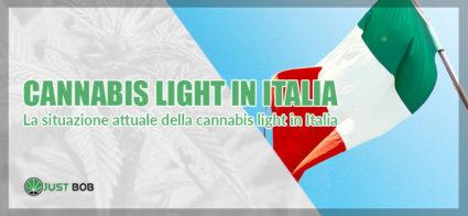 la situazione attula riguardo la cannabis light in italia