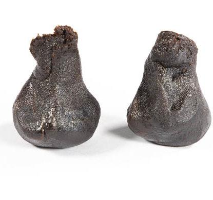 2 pezzi modellati di hashish cbd Girl Scout Cookies