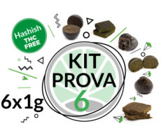 Kit di prova 6 varietà di hashish legale 6 grammi