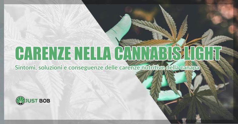 Carenze nella Cannabis light