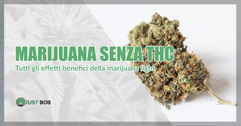 Marijuana senza THC benefici