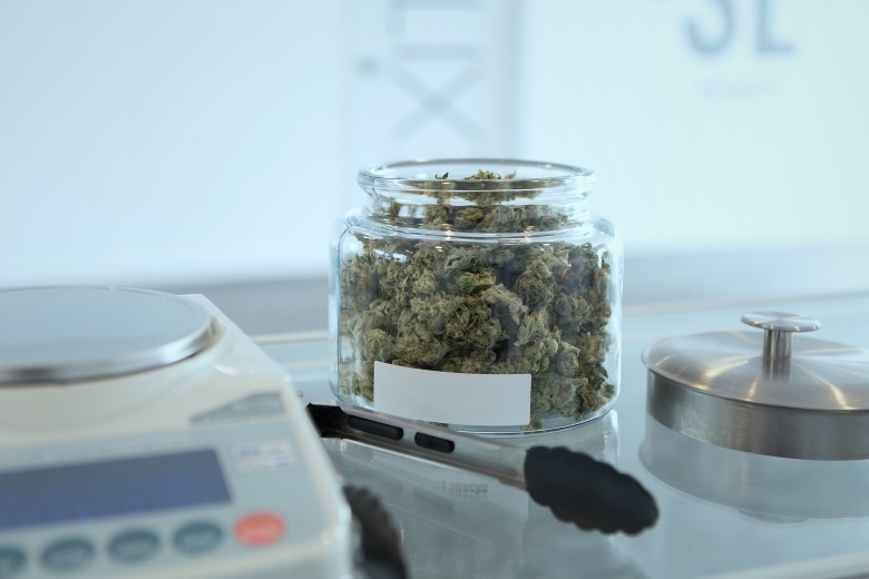 commercio cannabis legale cbd shop