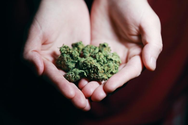 conseguenze proibizionismo della marijuana
