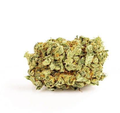 Cannabis Light Purple GG #4