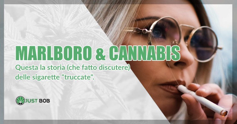 Marlboro e Cannabis light