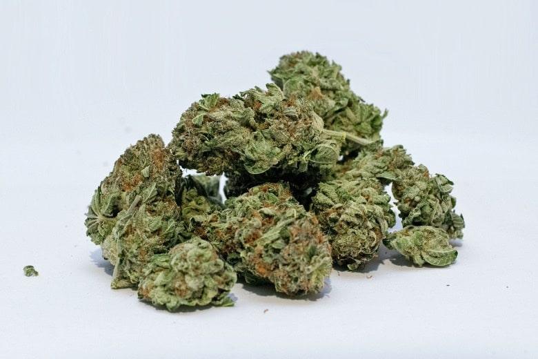 comprare cannabis CBD online e non piantarla