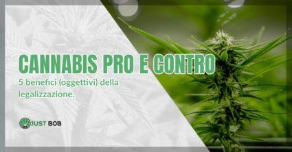 Cannabis pro e contro
