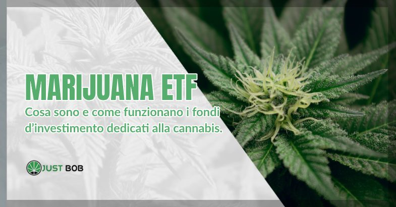 Marijuana ETF