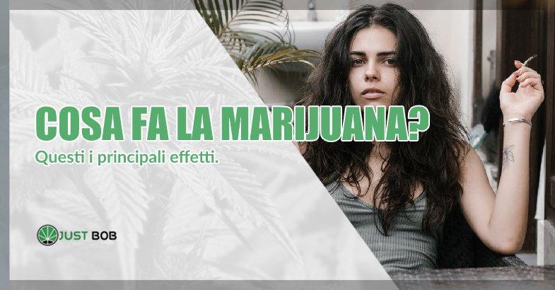 Cosa fa la marijuana