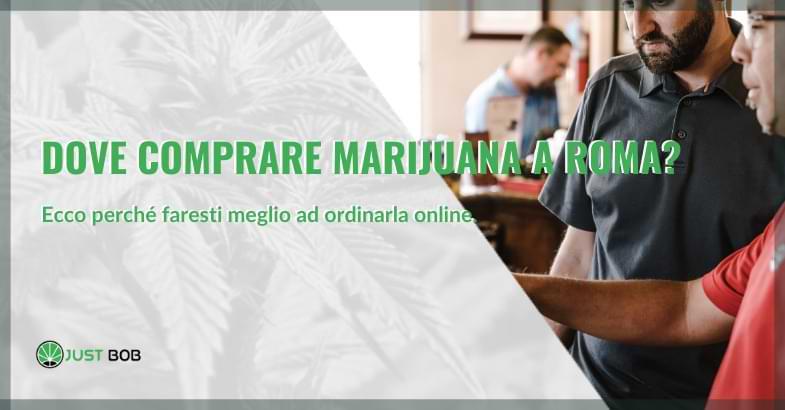 Dove comprare la marijuana a Roma città
