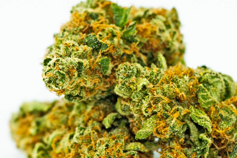 comprare cannabis online come fare