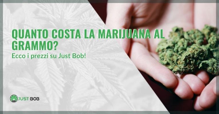 Quanto costa la marijuana al grammo on-line
