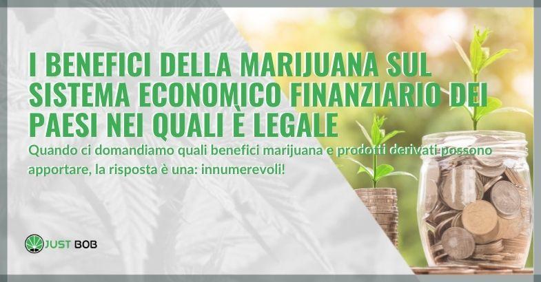 I benefici della marijuana sul sistema economico finanziario dei paesi nei quali è legale