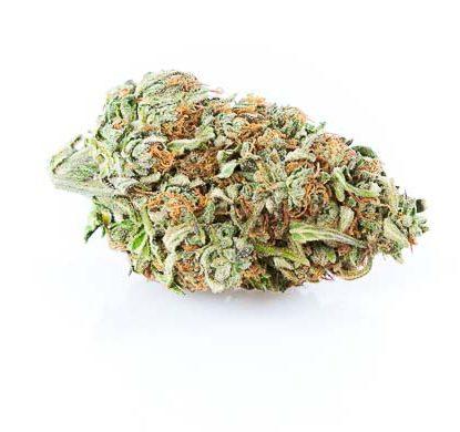 cbg-Zkittles-cannabis-light