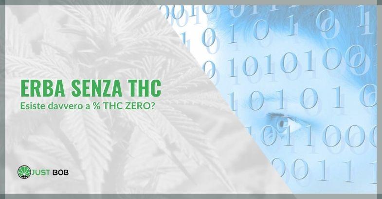 Erba senza thc: esiste davvero a % THC ZERO?
