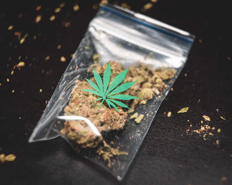 busta di marijuana