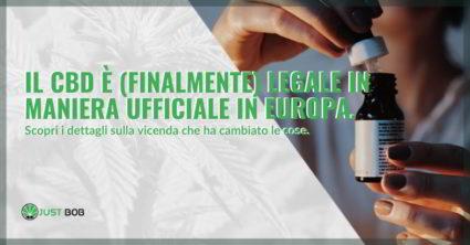 CBD legale in Europa