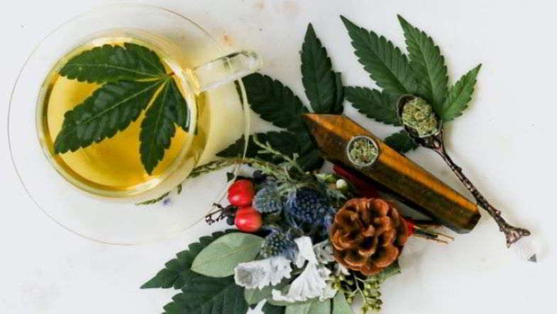 Alcol vs cannabis medica.
