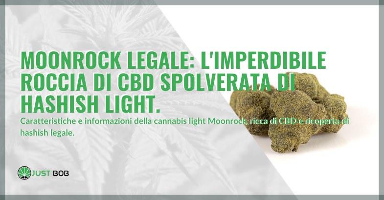 marijuana Moonrock legale caratteristiche